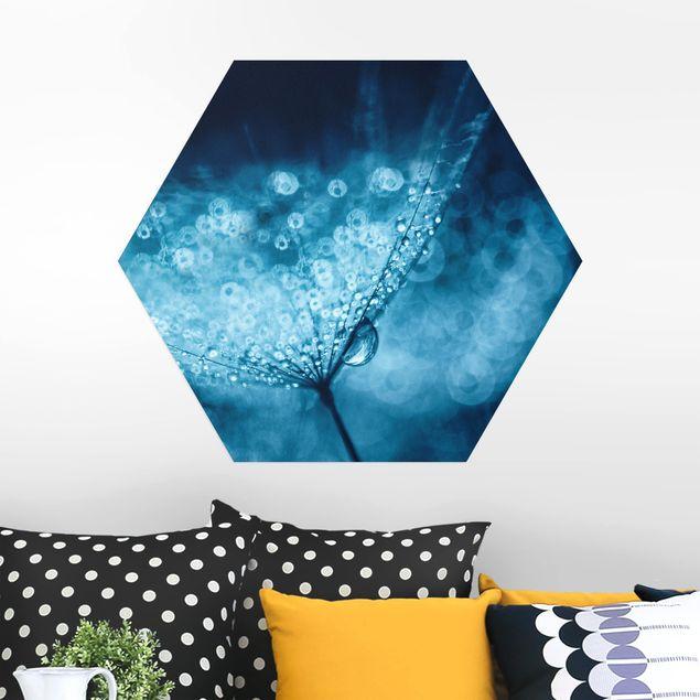 Esagono in Alu-dibond - Blu Dandelion In The Rain