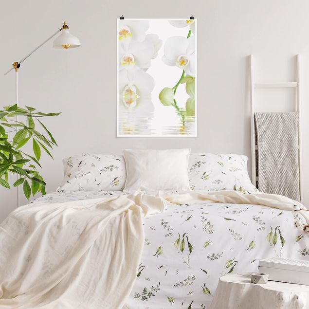 Poster - Orchid Benessere - White Orchid - Verticale 3:2