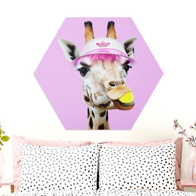 Esagono in forex - Giraffa nel tennis