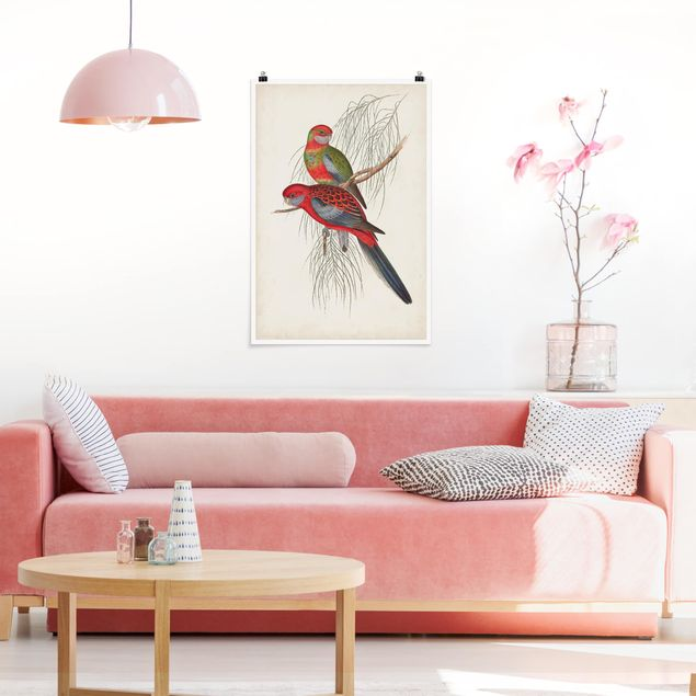 Poster - Tropical Parrot III - Verticale 3:2