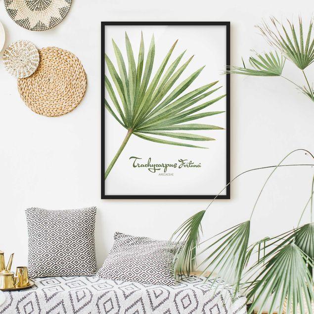 Poster con cornice - Watercolor Botany Trachycarpus Fortunei - Verticale 4:3