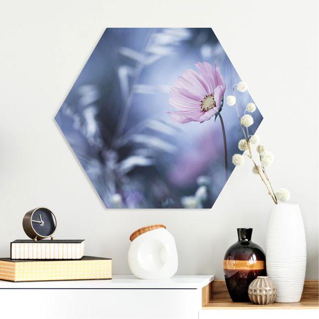 Esagono in forex - Bloom In Pastel