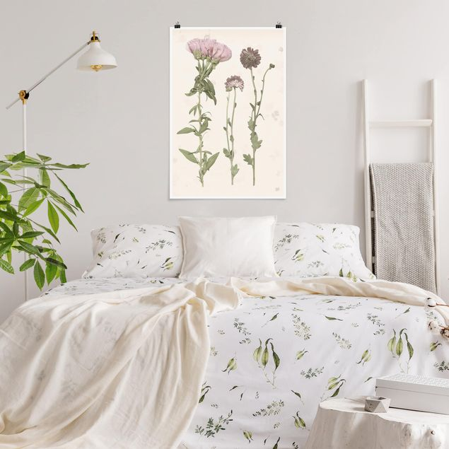 Poster - Herbarium In Pink III - Verticale 3:2