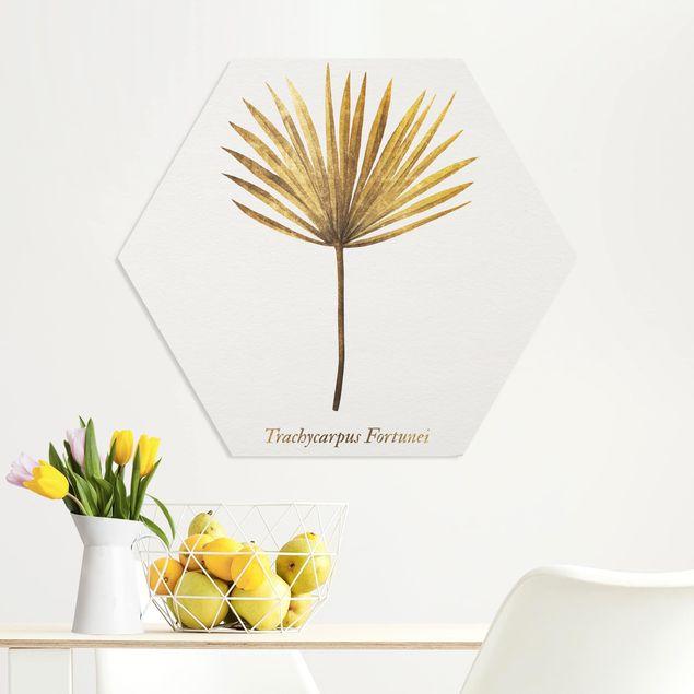 Esagono in forex - Gold - Palm Leaf