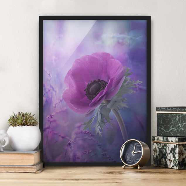 Poster con cornice - Anemones Bloom In Violet - Verticale 4:3