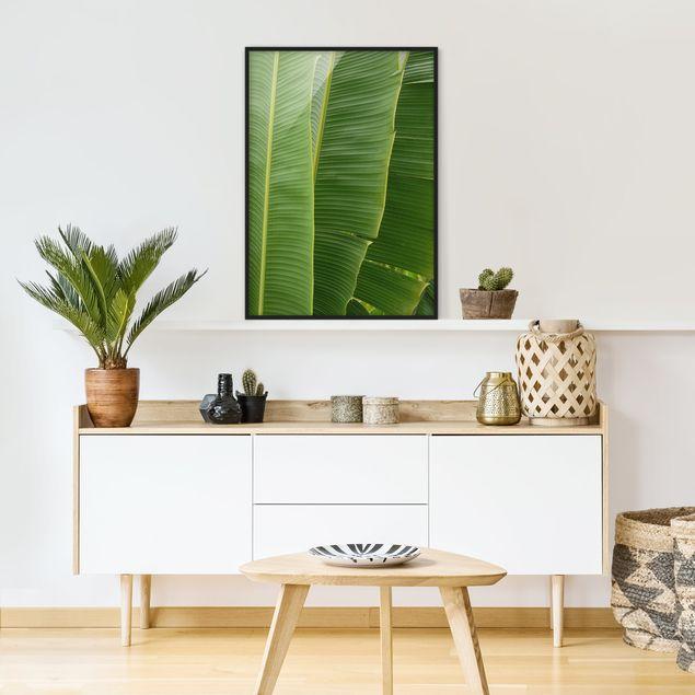 Poster con cornice - Banana Leaves - Verticale 4:3