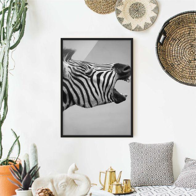 Poster con cornice - Rawling Zebra II - Verticale 4:3