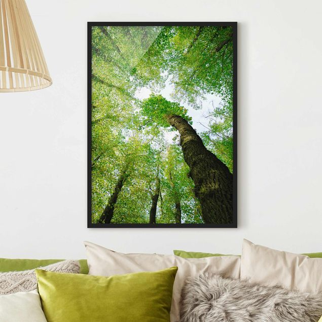 Poster con cornice - Trees Of Life - Verticale 4:3