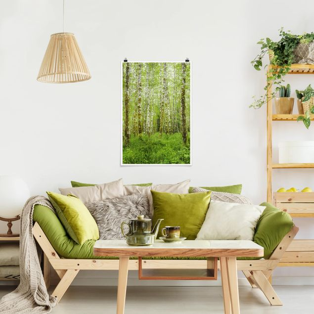 Poster - Hoh Rain Forest nel Parco Nazionale olimpica - Verticale 3:2