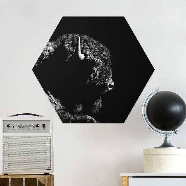 Esagono in forex - Bison In The Dark