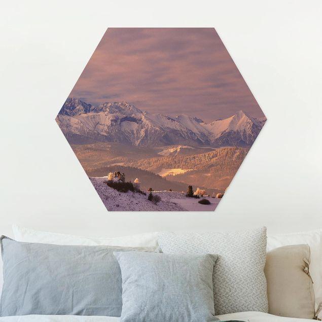 Esagono in forex - Alti Tatra In The Morning
