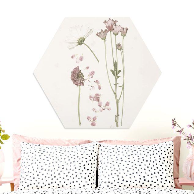 Esagono in forex - Herbarium In Pink II