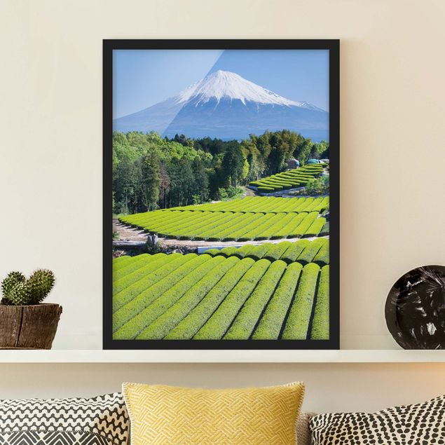 Poster con cornice - Tea Fields In Front Of The Fuji - Verticale 4:3