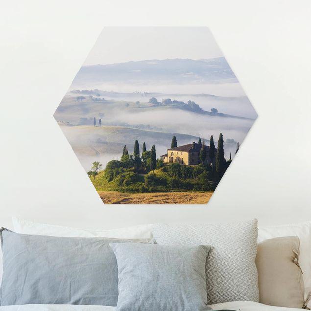 Esagono in forex - Vendita in Toscana