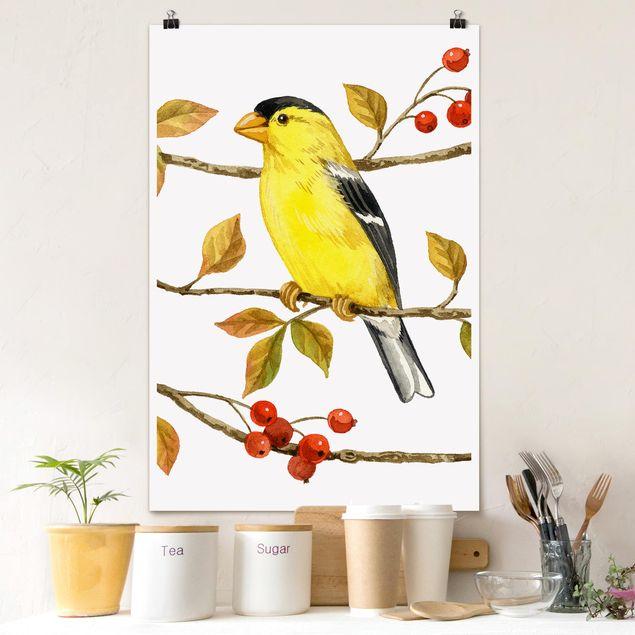 Poster - Uccelli e Bacche - American Cardellino - Verticale 3:2