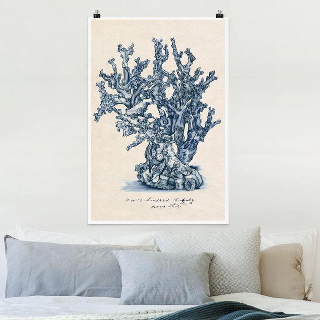 Poster - Mare Coralli Study II - Verticale 3:2