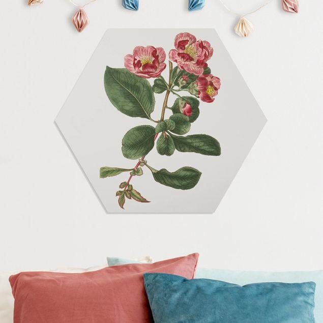 Esagono in forex - Gioielli Floral I