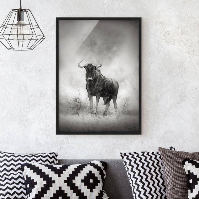 Poster con cornice - Staring Wildebeest - Verticale 4:3