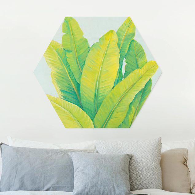 Esagono in forex - Giallo-Verde foglie di banana