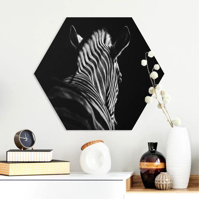 Esagono in forex - Scuro Zebra silhouette