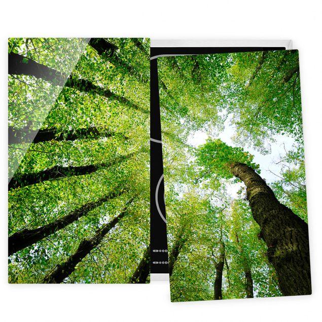 Coprifornelli in vetro - Trees Of Life